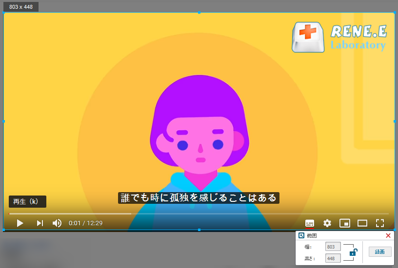 動画を再生する